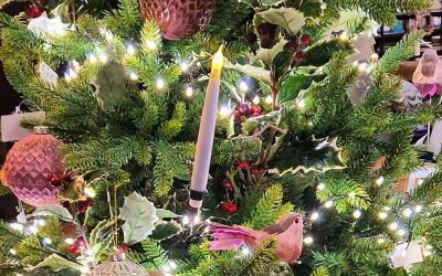 It's Almost Dec 1 – That Means Christmas Tree Time