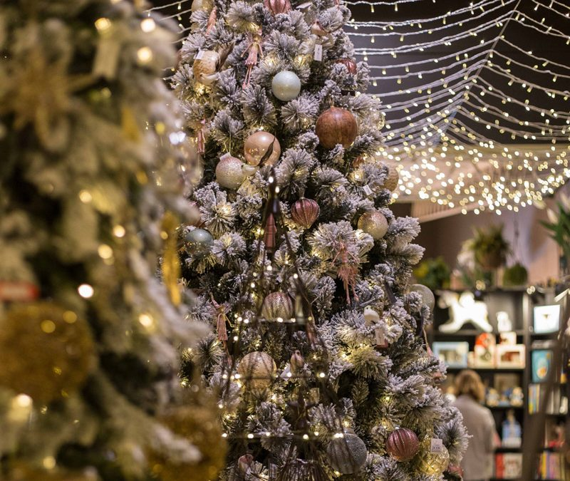 Christmas Is Coming Soon To Nest & Burrow