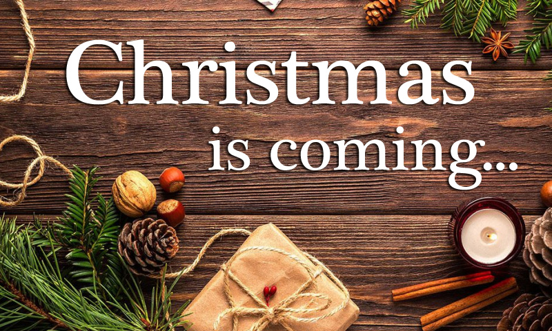 Christmas Is Coming To Nest & Burrow